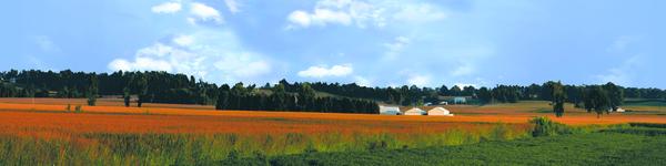 Farm Community Indiana Vista Part 1