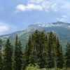Pine Mountain Left