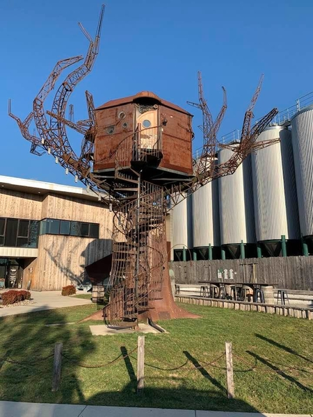 dogfish treehouse