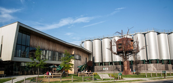 dogfish brewery2