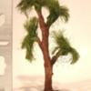L505 Oak (1)