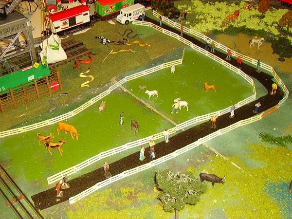z - Zoo Path