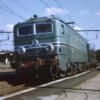 Euro008_edited-1-1