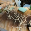 drying trees: Tree armatures re-coated in Woodland Scenics Latex rubber.