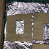 F6D497C5-39B4-44B8-AF73-3D5549328AC4