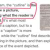 AP Cutkines procedures