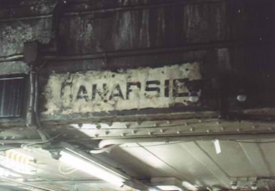 TS-canarsie1-545x380