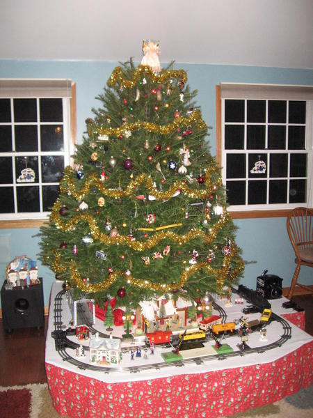 img_6219 - Train For Around Christmas Tree