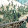 trees 12