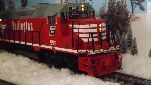 1-DSCF6305