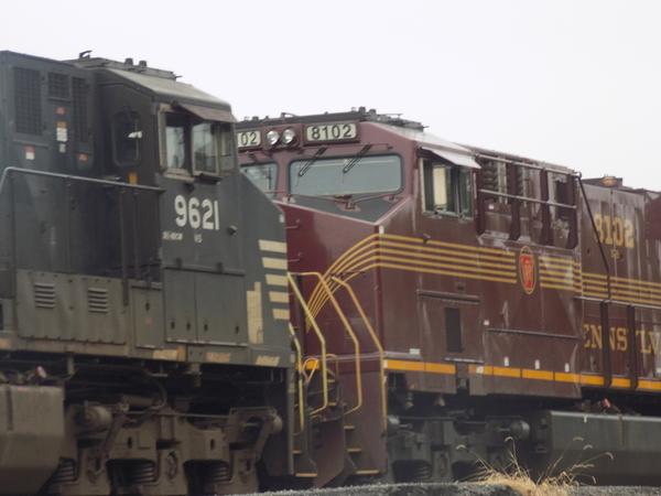 DSCN2235