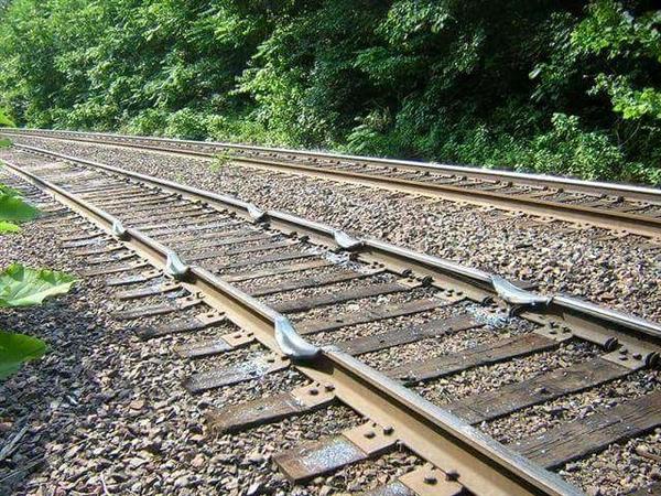 Rail_dips