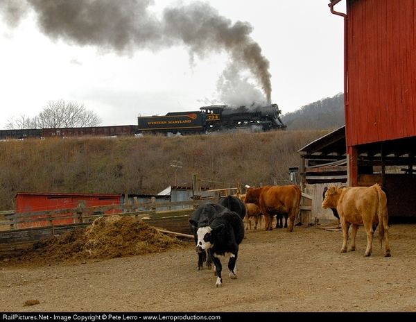WM 734 [2-8-0) at Helmstetter's Curve, Cash Valley, MD, 2006
