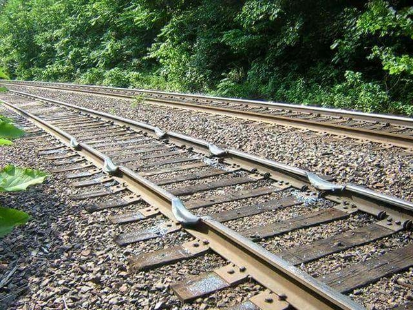 Rail dips