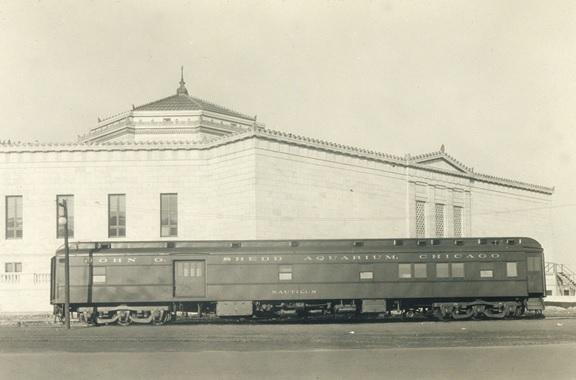 nautilus-train